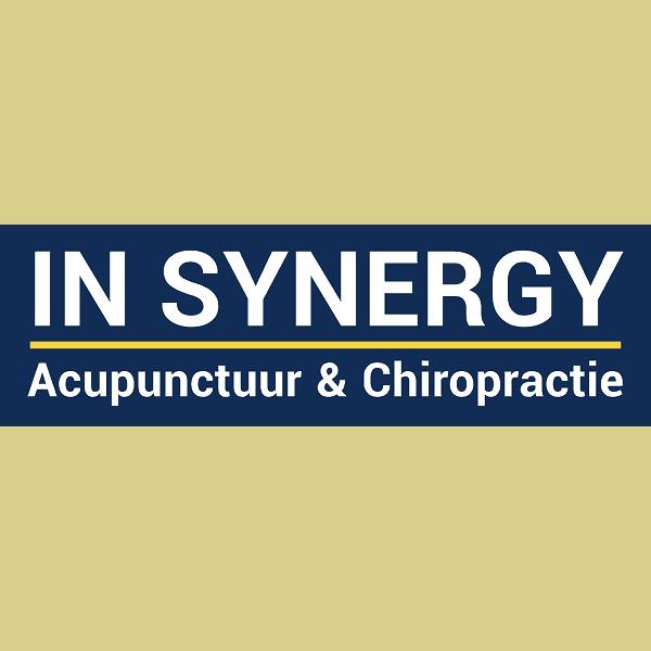 Logo Insynergy Groningen